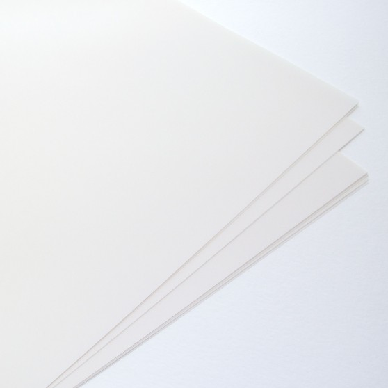 JS Polyester Plate 34x50.5cm per 10